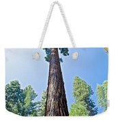 Giant Sequoia In Mariposa Grove In Yosemite National Park-california  Weekender Tote Bag