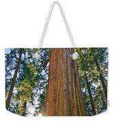 Giant Sequoia Trees Of Tuolumne Grove In Yosemite National Park. Weekender Tote Bag