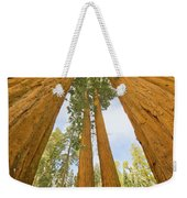 Giant Sequoias And First Snow Weekender Tote Bag by Yva Momatiuk John Eastcott