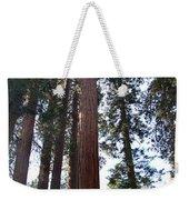 Giant Sequoias - Yosemite Park Weekender Tote Bag
