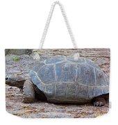 The Giant Aldabra Tortoise Weekender Tote Bag