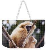 Gibbon On A Swing Weekender Tote Bag