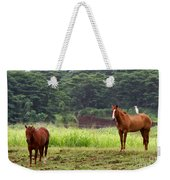 Giddy Up Horsy By Diana Sainz Weekender Tote Bag