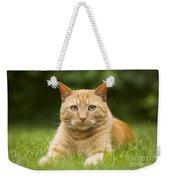Ginger Cat In Garden Weekender Tote Bag