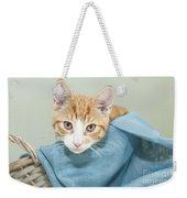 Ginger Kitten In A Basket Weekender Tote Bag