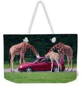 Giraffe. Animal Studies Weekender Tote Bag