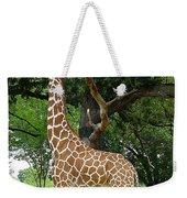 Giraffe Eats-09053 Weekender Tote Bag