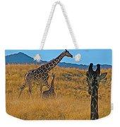 Giraffe Family In Living Desert Museum In Palm Desert-california Weekender Tote Bag