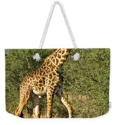 Giraffe From Tanzania Weekender Tote Bag