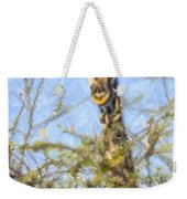Giraffe Giraffa Camelopardalis Peeping From Acacia Weekender Tote Bag