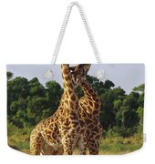 Giraffe Males Sparring Masai Mara Kenya Weekender Tote Bag