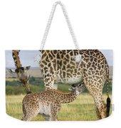 Giraffe Nuzzling Her Nursing Calf Weekender Tote Bag