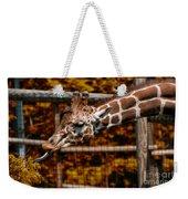 Giraffe Showing His 20 Inch Tongue Weekender Tote Bag