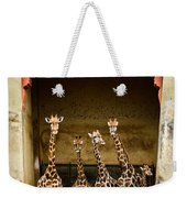 Giraffes Lineup Weekender Tote Bag