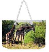 Giraffes On Savanna Eating. Safari In Serengeti Weekender Tote Bag