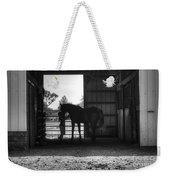 Girl With Horse Weekender Tote Bag