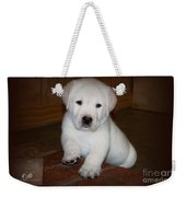 Give Me Your Paw Weekender Tote Bag