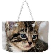 Gizmo The Kitten Weekender Tote Bag