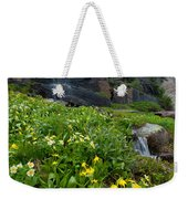 Glacier Lilies And Globeflower Beside A Mountain Stream Weekender Tote Bag