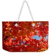 Glowing Fall Maple Colors 3 Weekender Tote Bag
