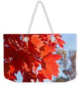 Glowing Fall Maple Colors 4 Weekender Tote Bag