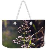 Glowing Grass In Palo Duro Canyon 100613.02 Weekender Tote Bag