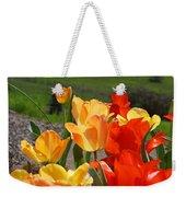 Glowing Sunlit Tulips Art Prints Red Yellow Orange Weekender Tote Bag