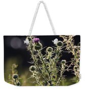 Glowing Thistle - 1 Weekender Tote Bag