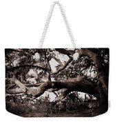 Gnarly Limbs At The Ashley River In Charleston Weekender Tote Bag