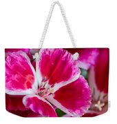 Godetia Pink And White Flower Weekender Tote Bag