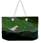God's Tiny Tree Frog Weekender Tote Bag