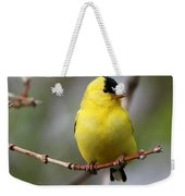 Gold Finch Weekender Tote Bag