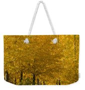 Golden Aspens Weekender Tote Bag by Don Schwartz