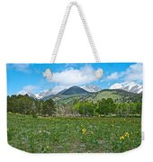 Golden Banner In Horseshoe Park In Rocky Mountain Np-co- Weekender Tote Bag