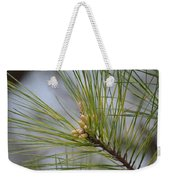 Golden Catkins Of The Great Pine Weekender Tote Bag