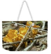 Golden Chanterelle - Cantharellus Cibarius Weekender Tote Bag