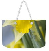 Golden Daffodils Weekender Tote Bag