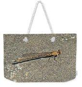 Golden Damselfly - Odonata - Suborder Zygoptera Weekender Tote Bag