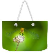 Golden Dragonfly On Perch Weekender Tote Bag