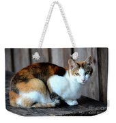 Golden Eyed Ferrel Weekender Tote Bag