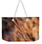 Golden Fern Spore Stem 6 Weekender Tote Bag