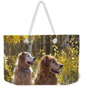 Golden Goldens - Golden Retriever Brothers - Casper Mountain - Casper Wyoming Weekender Tote Bag