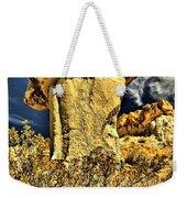 Golden Hoodoo Weekender Tote Bag