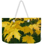 Golden Leaves Floating Weekender Tote Bag
