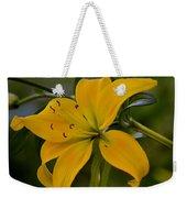 Golden Lily Sway 2013 Weekender Tote Bag