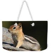 Golden-mantled Ground Squirrel Weekender Tote Bag