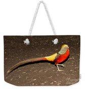 Golden Pheasant Male Weekender Tote Bag