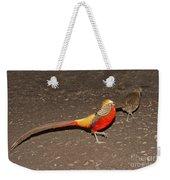Golden Pheasant Pair Weekender Tote Bag