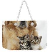 Golden Retriever And Kittens Weekender Tote Bag