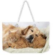 Golden Retriever And Orange Cat Weekender Tote Bag